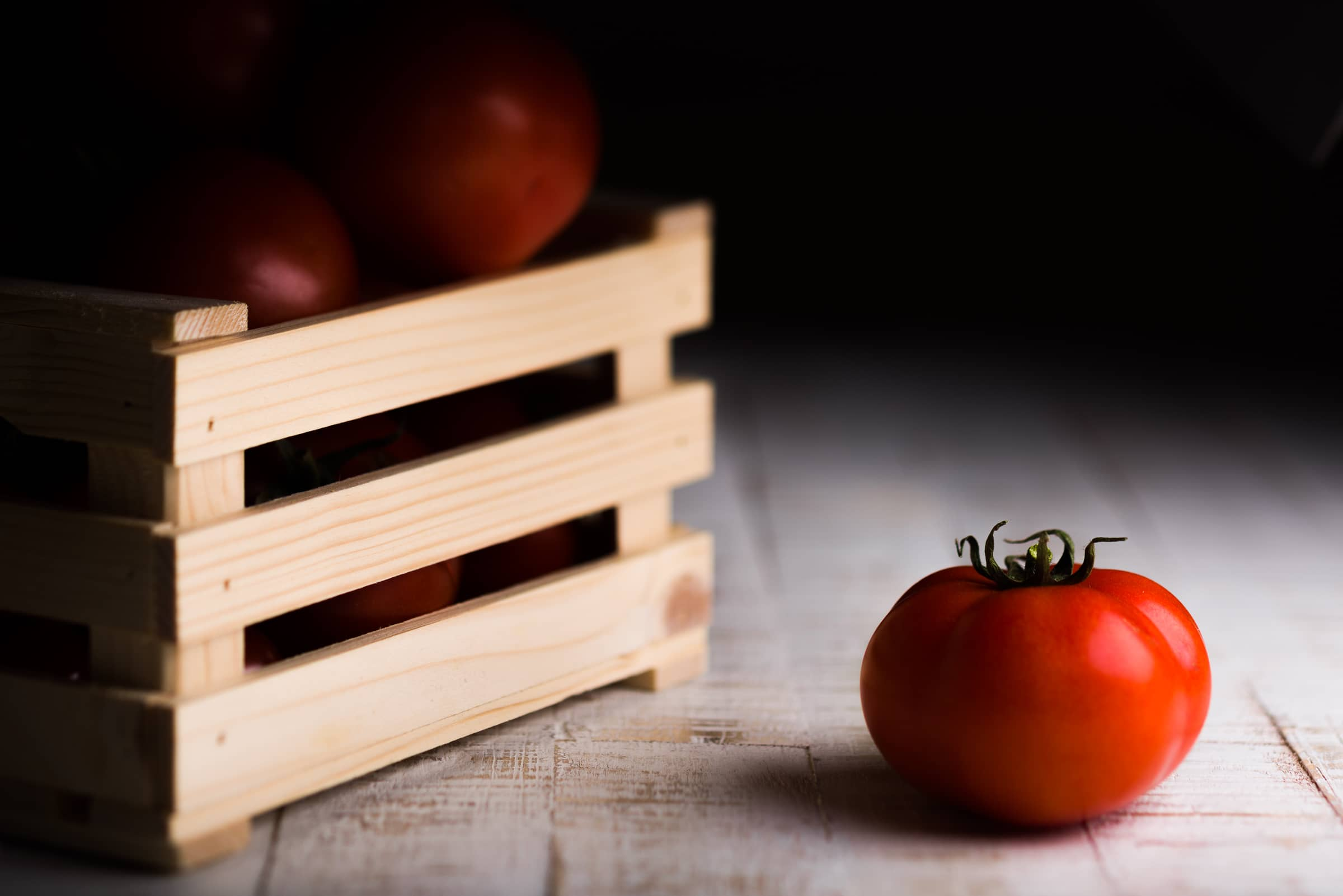 Una luce per un pomodoro GnamAm.com GoBo