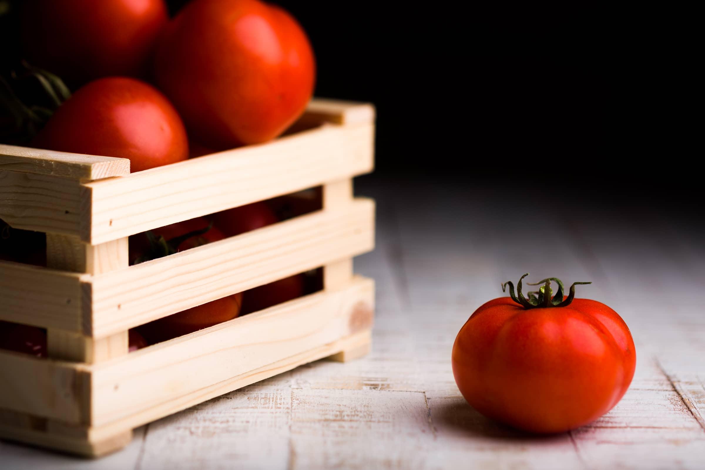 Una luce per un pomodoro GnamAm.com Schema della luce